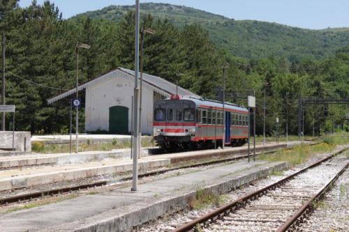 Aquilotto a Carpinone e Isernia, 15 giugno 2012