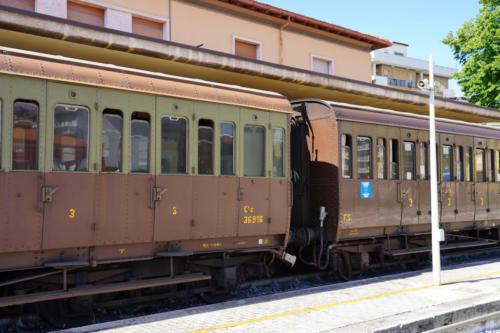 LRT02005